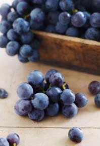 Grape Seed Extract: Conditioner Extraordinaire