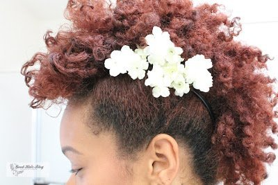 Twist Out Fro Hawk- Natural Hair Style!