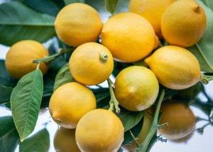 color natural hair lemons
