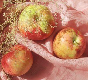 diy hair detangler apple cider vinegar