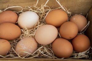 biotin for hair growth eggs